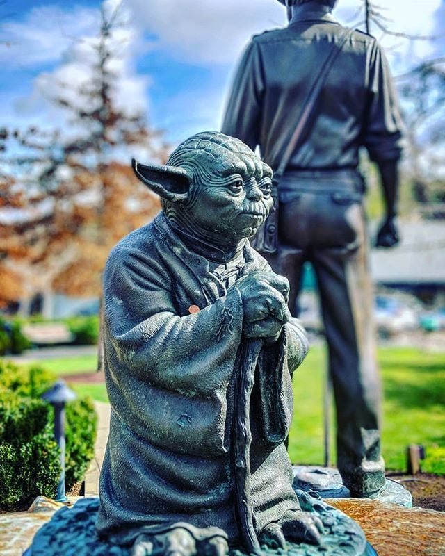 Master Yoda contemplating Indy's backside. #deepthoughts
